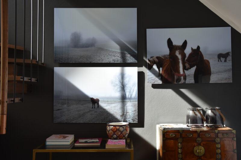 Fotografie pod szkłem akrylowym