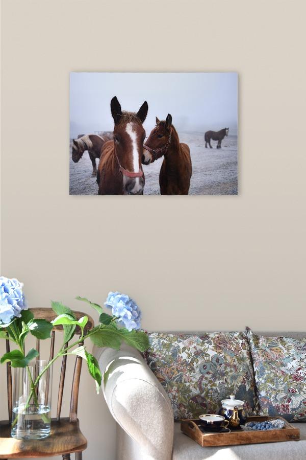 Unconditional (The Magic Has Arrived), fotografia pod szkłem akrylowym 90 cm x 60 cm
